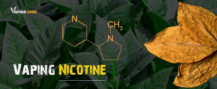 Vaping Nicotine E Cig Liquid