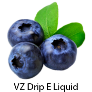 VZ Max-VG Blueberry E-Liquid