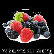 VZ SC Wild Berries Gourmet Flavoring