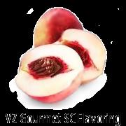 VZ SC White Peach Gourmet Flavoring