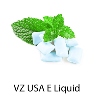 VZ USA Cool Mint Gum E-Liquid